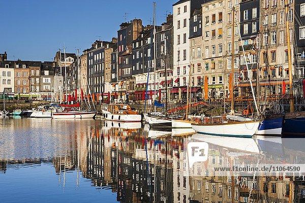 Häuser und Boote am alten Hafen mit Spiegelungen im ruhigen Wasser  Vieux Bassin  Honfleur  Departement Calvados  Normandie  Frankreich  Europa