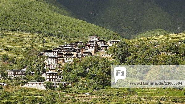 Dorf Rinchengang mit traditionellen Wohnhäusern  Wangdue Phodrang Distrikt  Königreich Bhutan
