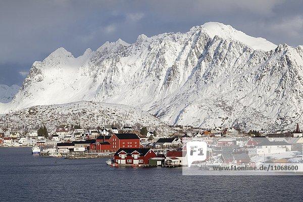 Bucht mit roten Häusern im Winter  Reine  Lofoten  Norwegen  Reine  Lofoten  Norwegen  Europa