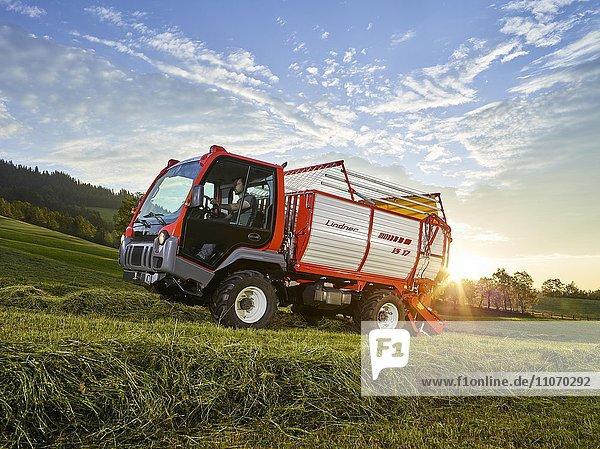 Transporter Unitrac mit Heuladewagen nimmt das getrocknete Gras auf  Hopfgarten  Brixental  Tirol  Österreich  Europa