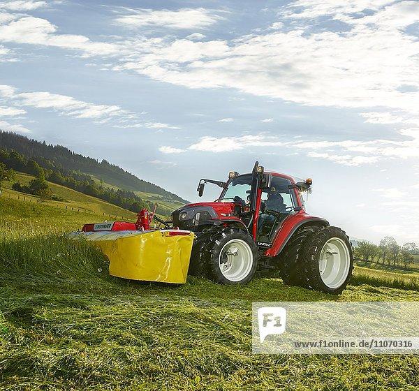 Traktor mit Zwillingsrädern mäht ein Feld  Hopfgarten  Brixental  Tirol  Österreich  Europa