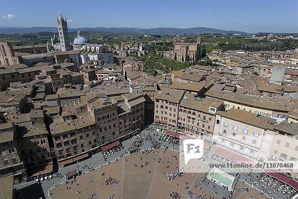 Ausblick auf die Piazza del Campo und Dächer der Altstadt vom Torre del Mangia  Siena  Toskana  Italien  Europa