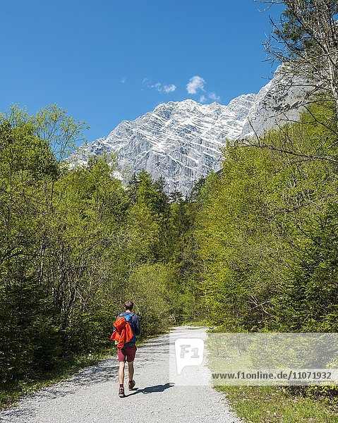 Wanderer  Watzmann-Massiv  bei St. Bartholomä am Königssee  Nationalpark Berchtesgaden  Berchtesgadener Land  Oberbayern  Bayern  Deutschland  Europa