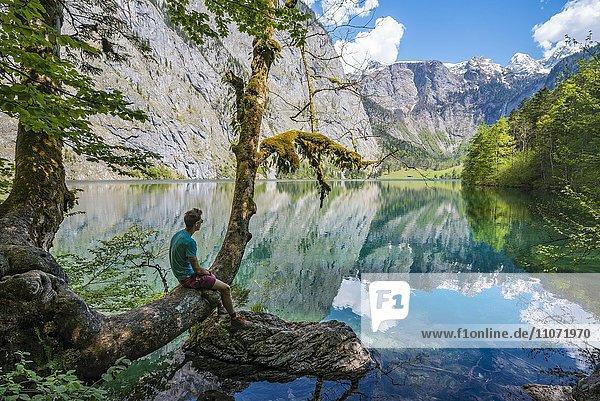 Junger Mann sitzt auf einem Baum am Wasser und blickt in die Ferne  Obersee mit Wasserspiegelung  Salet am Königssee  Nationalpark Berchtesgaden  Berchtesgadener Land  Oberbayern  Bayern  Deutschland  Europa