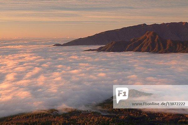 Cumbre Vieja bei Sonnenuntergang  Gipfel schauen aus den mit Wolken  La Palma  Kanarische Inseln  Spanien  Europa