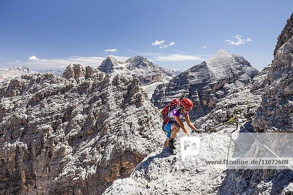 Bergsteiger beim Abstieg von der Südliche Fanesspitze über den Klettersteig Via ferrata Tomaselli  hinten die Tofana di Rozes  Tofana di Mezzo und Tofana di Dentro  Dolomiten  Alpen  Belluno  Italien  Europa