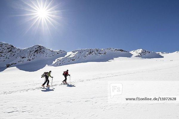 Skitourengeher beim Aufstieg auf die Cima Marmotta im Martelltal  hinten der Gipfel der Cima Marmotta  links die Veneziaspitzen  Köllkuppe  Ortlergruppe  Ortlergebiet  Nationalpark Stilfser Joch  Martell  Vinschgau  Südtirol  Trentino-Südtirol  Italien  Europa
