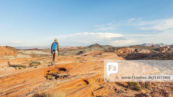 Frau wandert im Valley of Fire State Park  Nevada  USA  Nordamerika