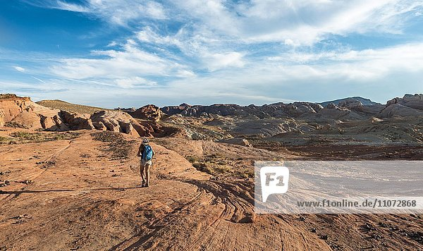 Frau wandert im Valley of Fire State Park  Nevada  USA  Nordamerika