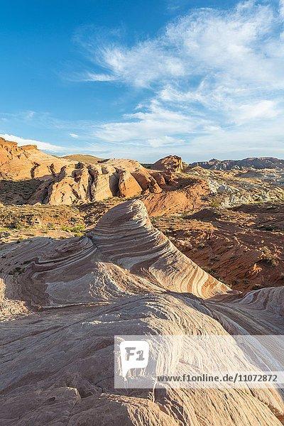 The Fire Wave  hinten Felsformation Sleeping Lizard  Valley of Fire State Park  Nevada  USA  Nordamerika