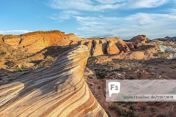 Fire Wave Sandsteinformation im Abendlicht  dahinter Felsformation Sleeping Lizard  Valley of Fire State Park  Nevada  USA  Nordamerika