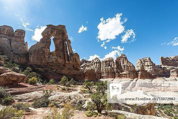 Druid Arch  Felsformation  Steinbogen  Elephant Canyon  The Needles District  Canyonlands-Nationalpark  Utah  Vereinigte Staaten von Amerika  USA  Nordamerika