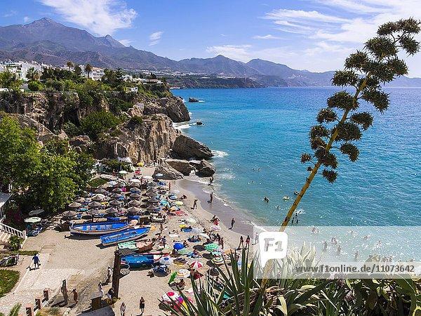 Strand Playa Calahonda  Nerja  Provinz Málaga  Costa del Sol  Andalusien  Spanien  Europa