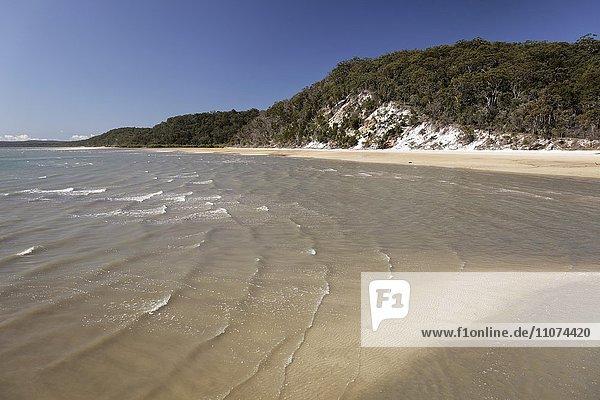 Bucht mit Sandstrand und Steilküste  UNESCO Weltnaturerbe  Fraser Island  Great Sandy National Park  Queensland  Australien  Ozeanien