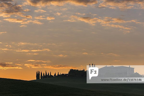 Toskanische Landschaft mit Gehöft bei Sonnenaufgang  San Quirico d'Orcia  Val d'Orcia  Toskana  Italien  Europa