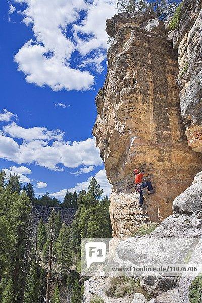 Mann klettert  Felswand  Flagstaff  Arizona  USA  Nordamerika