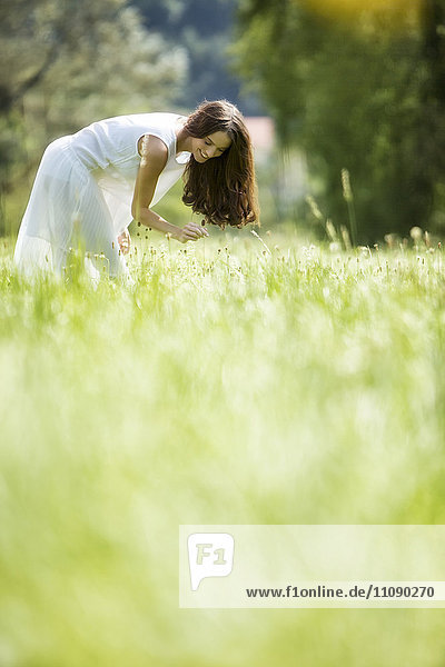Happy woman wearing white summer dress picking flowers on a meadow