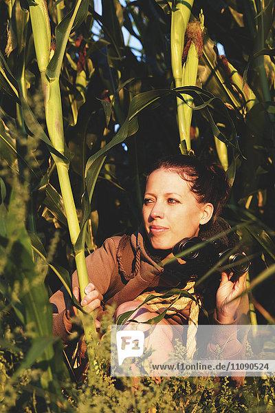 Frau  die sich im Kornfeld versteckt und etwas mit einem Fernglas beobachtet.