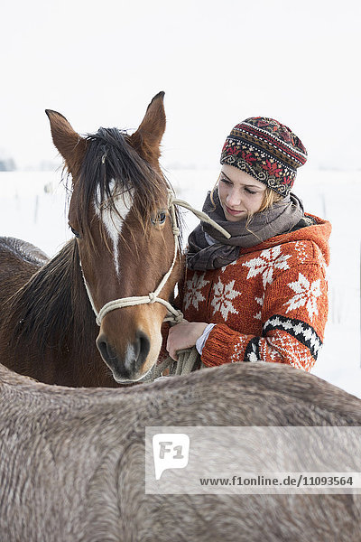 Young woman stroking her horse in the barn  Bavaria  Germany Young woman stroking her horse in the barn, Bavaria, Germany