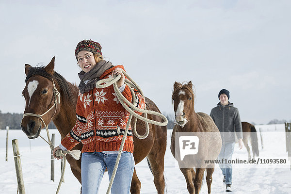 Young couple walking with horses in field  Bavaria  Germany