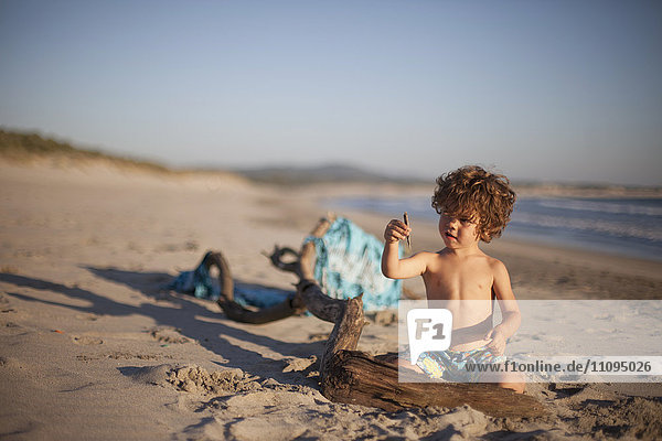 Small boy playing with driftwood on the beach  Viana do Castelo  Norte Region  Portugal