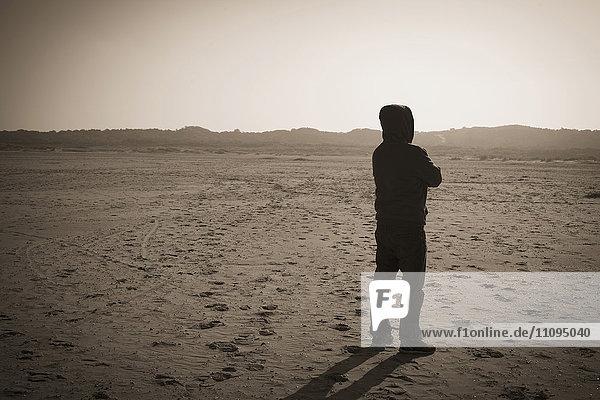 Rear view of a mature man standing in desert  Renesse  Schouwen-Duiveland  Zeeland  Netherlands
