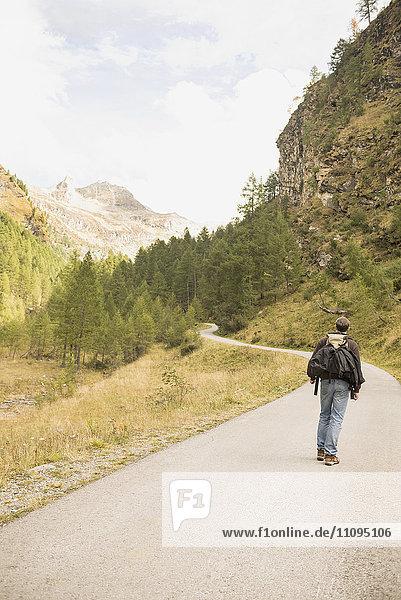 Rear view of a mature hiker walking on mountain road  Austrian Alps  Carinthia  Austria