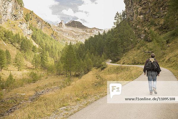 Rear view of mature hiker walking on road  Austrian Alps  Carinthia  Austria