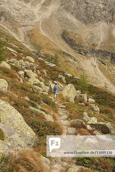 Rear view of a mature hiker climbing on mountain  Austrian Alps  Zirmsee  Carinthia  Austria
