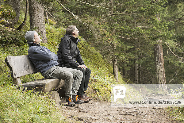 Two mature hikers resting on bench in forest  Austrian Alps  Carinthia  Austria