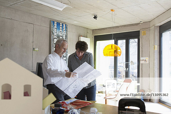 Two Architects discussing about blueprints in the office  Freiburg im Breisgau  Baden-Württemberg  Germany
