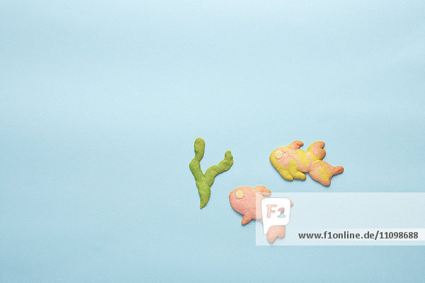 Cookies of seaweed and goldfishes