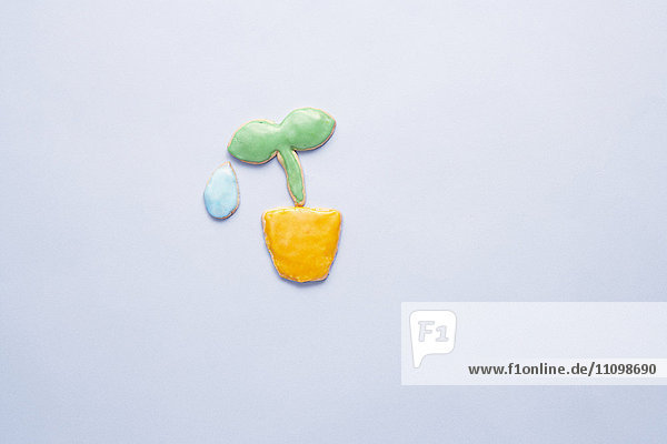 Cookies of potted plant and dew drop