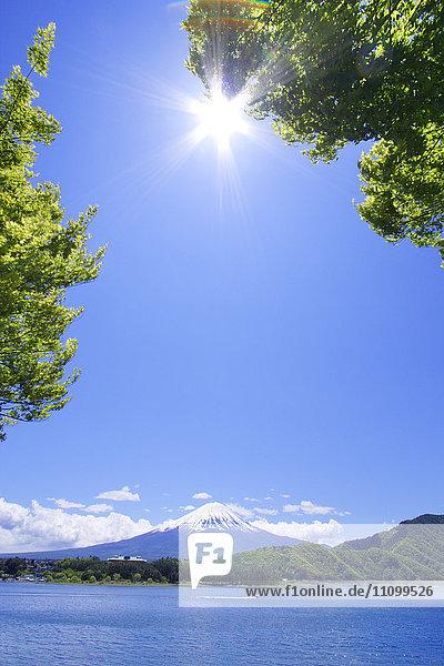 Clear Sky Over Mt Fuji