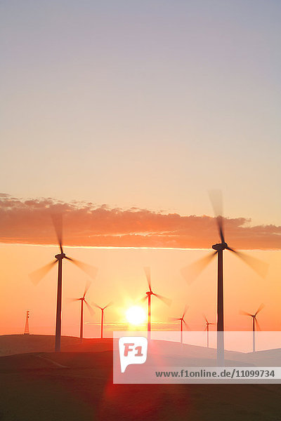 Sunrise Over Wind farm