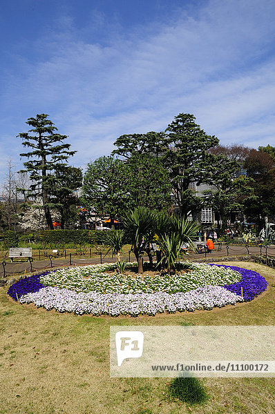 Hibiya park  Chiyoda Ward  Tokyo Prefecture  Honshu  Japan