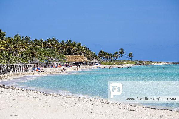 Playa Larga  Cayo Coco  Jardines del Rey  Ciego de Avila Province  Cuba  West Indies  Caribbean  Central America