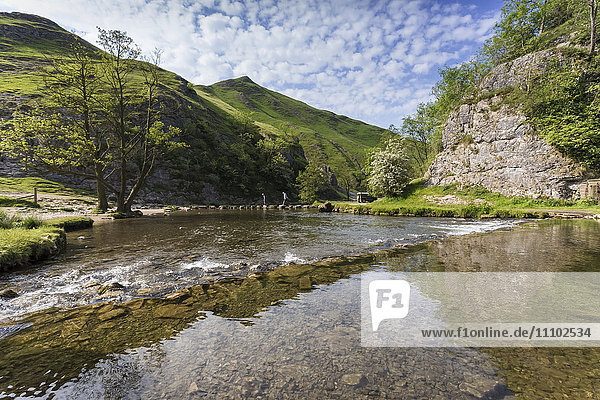 Dovedale reflections  hikers on stepping stones and Thorpe Cloud  limestone gorge in spring  Peak District  Derbyshire  England  United Kingdom  Europe