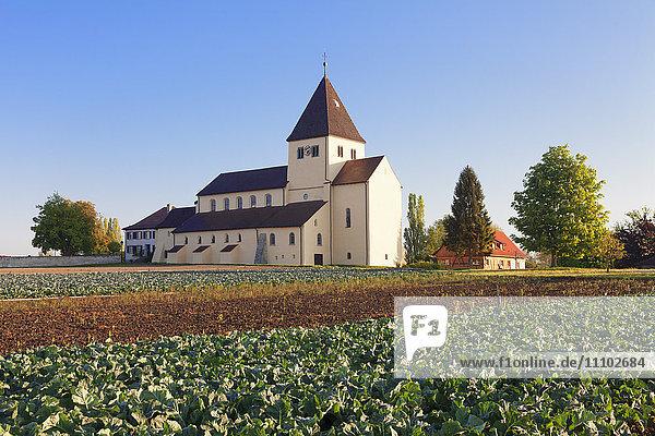 St. Georg church  Oberzell  UNESCO World Heritage Site  Reichenau Island  Lake Constance  Baden-Wurttemberg  Germany  Europe