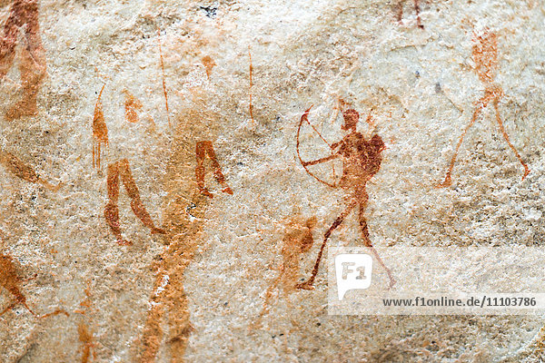 San rock art cave paintings on the wall of a rocky overhang in the Cederberg  Western Cape  South Africa  Africa
