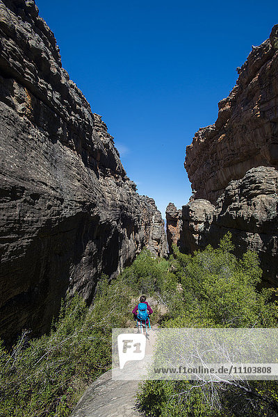Trekking in the Cederberg mountains  Western Cape  South Africa  Africa