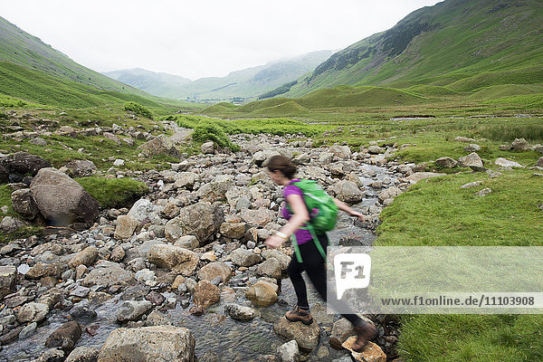 Trekking along Mickeldon Valley in Great Langdale towards Bowfell in the Lake District National Park  Cumbria  England  United Kingdom  Europe