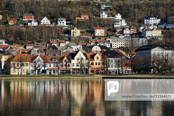 Lille Lungegard lake  Bergen  Norway  Scandinavia  Europe