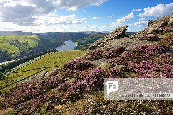 View from Derwent Edge  Peak District National Park  Derbyshire  England  United Kingdom  Europe