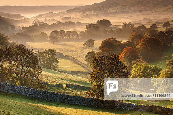 The Littondale Valley lit by the early morning light on a misty autumn morning in the Yorkshire Dales  Yorkshire  England  United Kingdom  Europe