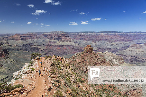 Hikers descend the curving South Kaibab trail in Grand Canyon National Park  UNESCO World Heritage Site  Arizona  United States of America  North America