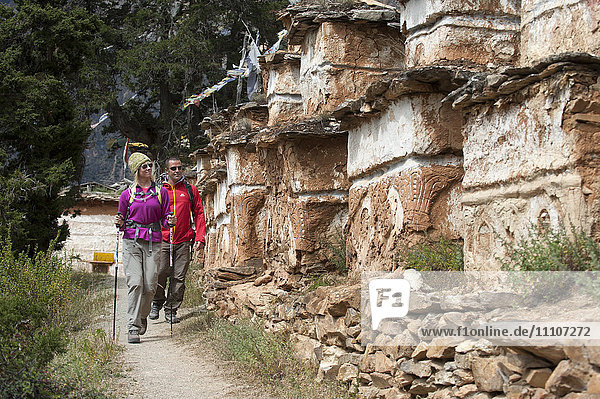 Trekking past a line of Tibetan chortens near Phoksundo lake in Dolpa  a remote region of Nepal  Asia