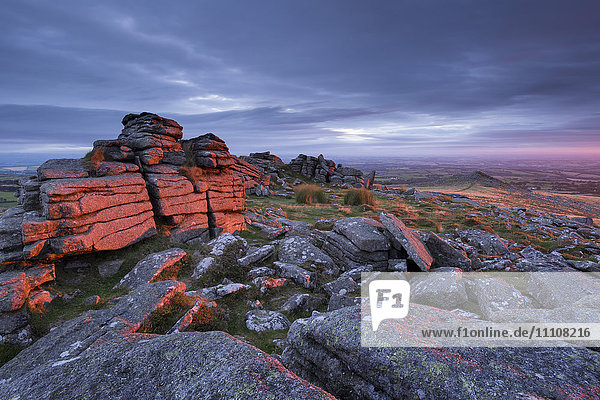 First light at sunrise glows against Belstone Tor  Dartmoor National Park  Devon  England  United Kingdom  Europe