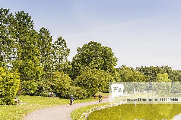 Schweden  Skane  Malmö  Kungsparken  Grüne Bäume entlang des Sees