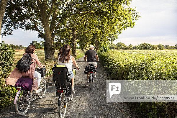 Schweden  Blekinge  Solvesborg  Rückansicht von Mann und Frau beim Radfahren auf der Landstraße